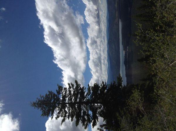 Humboldt-toiyabe National Forest: Dog Valley