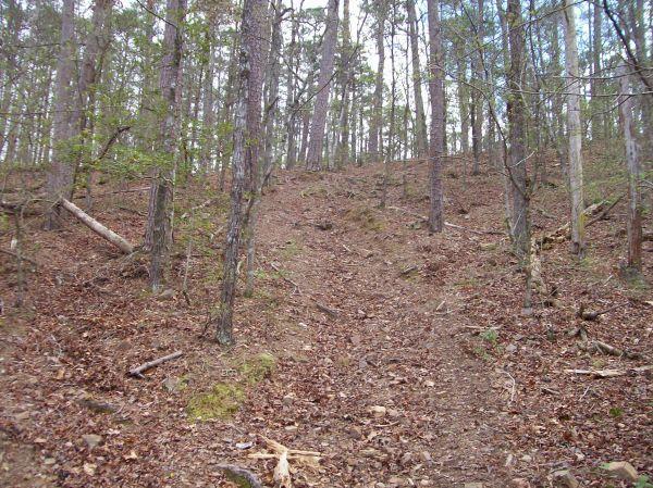 Bear Creek Trail- Lake Greeson